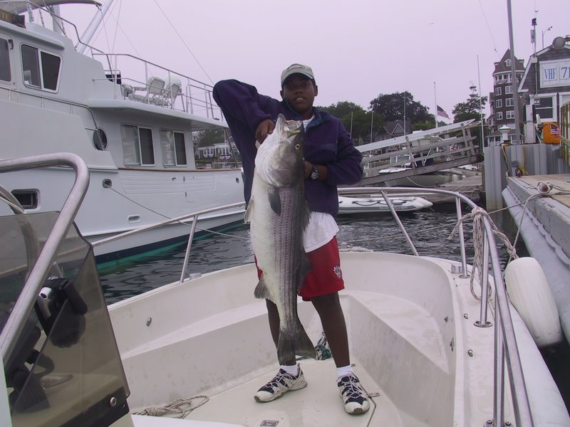 Archive for rhode island stripers for Fishing in rhode island